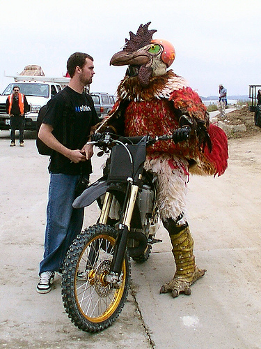 guy-in-chicken-suit-on-motorcycle