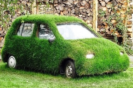 caption contest, car covered with grass | Buffet o' Blog
