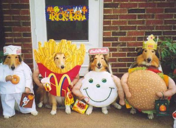 costume - dogs in fast food costumes